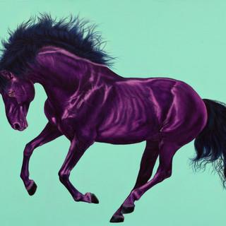 Violet horse on aquamarine