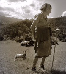 There once was a lady goat herder ....