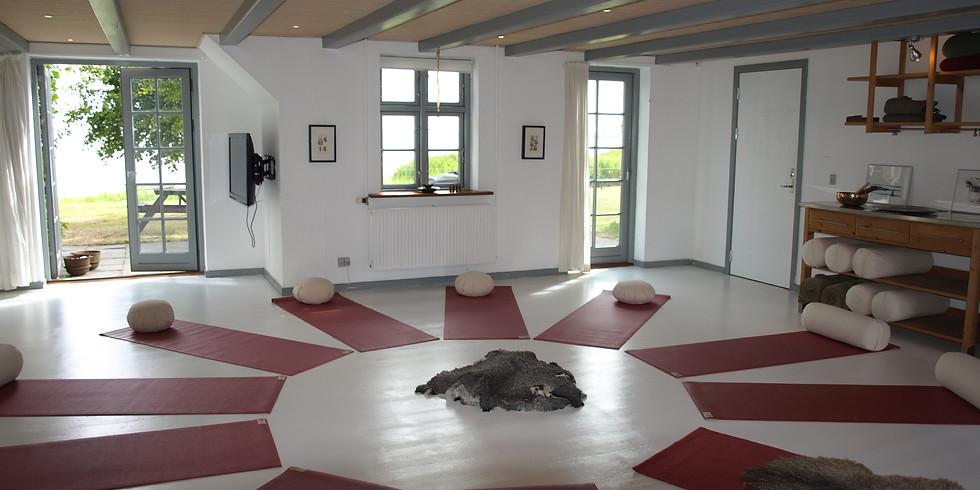 Chakra Yoga - workshop nederste chakraer