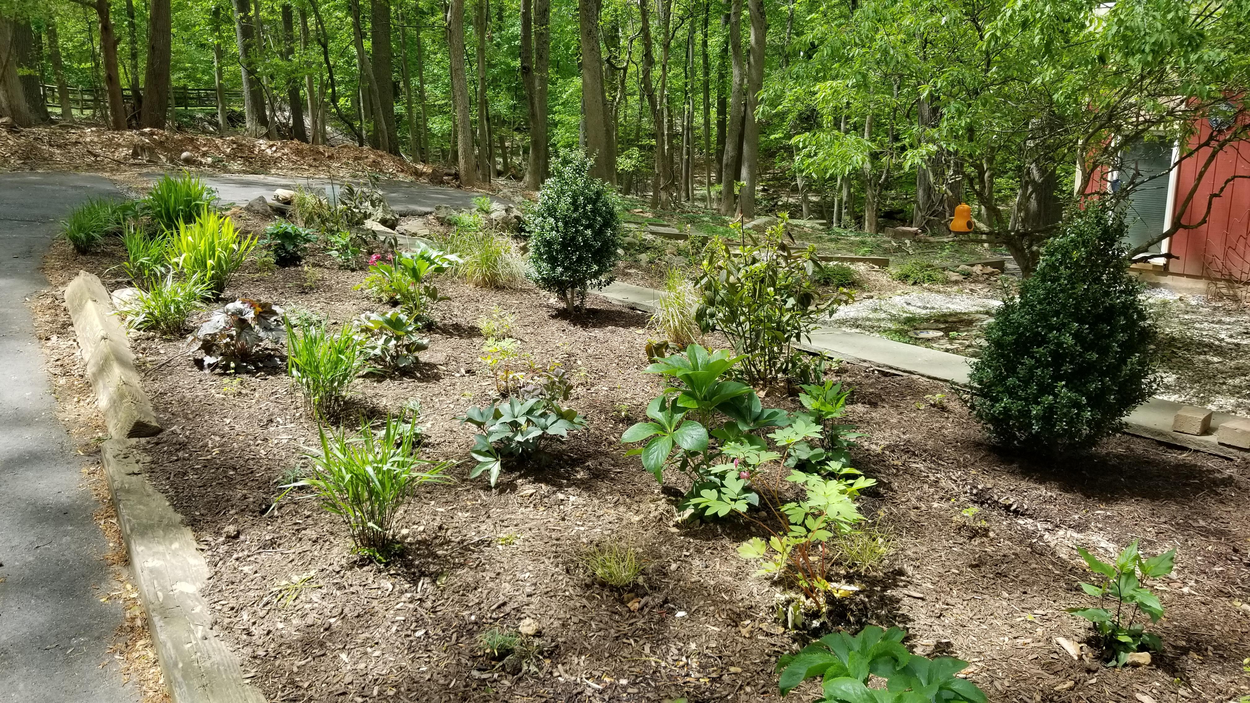 Radnor garden installs