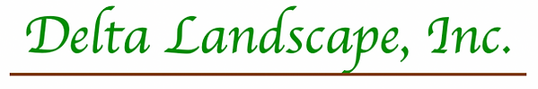 Logo name.png