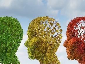 Factors that Age your Brain