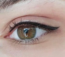 Wing Eyeliner - Top Only