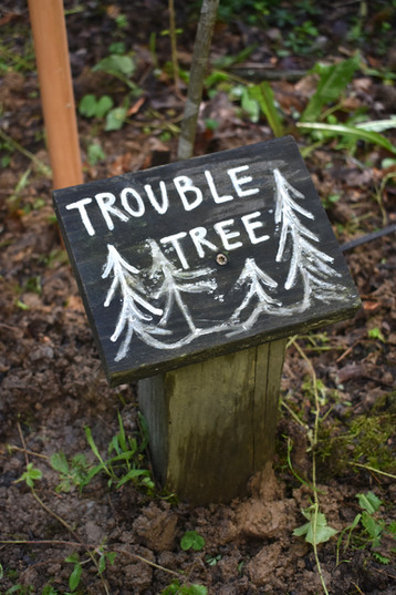 Trouble Tree