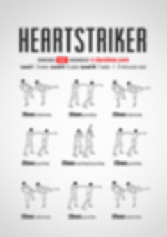 heartstriker-workout-intro-hiit.jpg