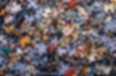 puzzle-4.jpg