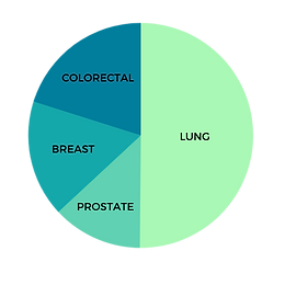 Lung Cancer Pie Chart.png