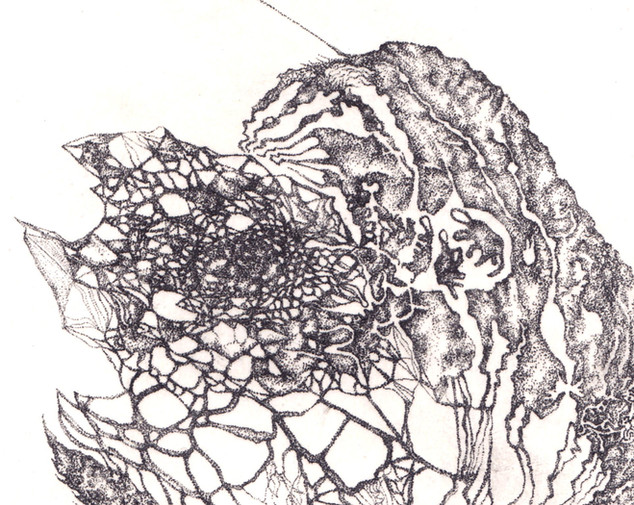 ribosome detail01.jpg