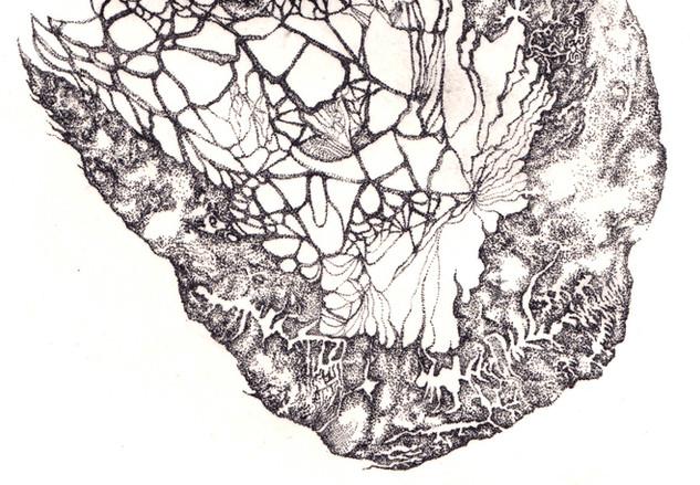 ribosome detail02.jpg