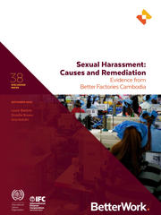 Discussion Paper 38: Sexual Harassment – Causes and Remediation