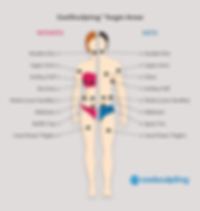 coolsculpting-target-areas-968x1024.png