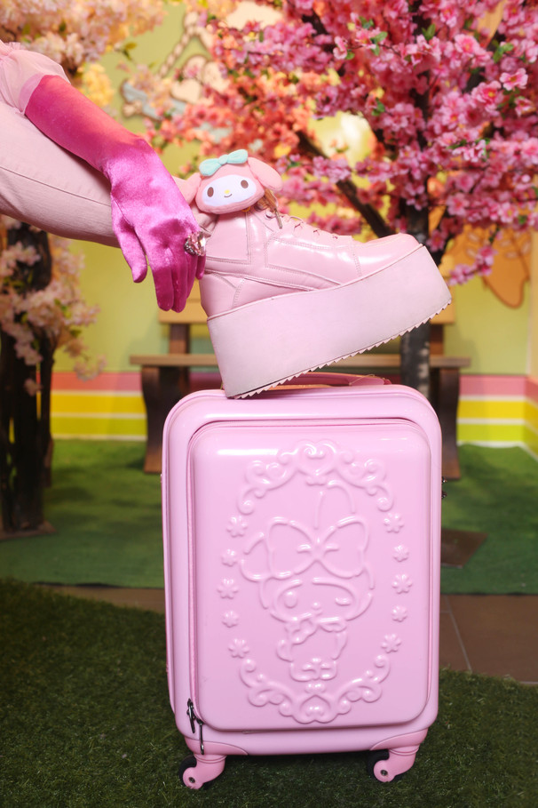 Product-suitcase.jpg