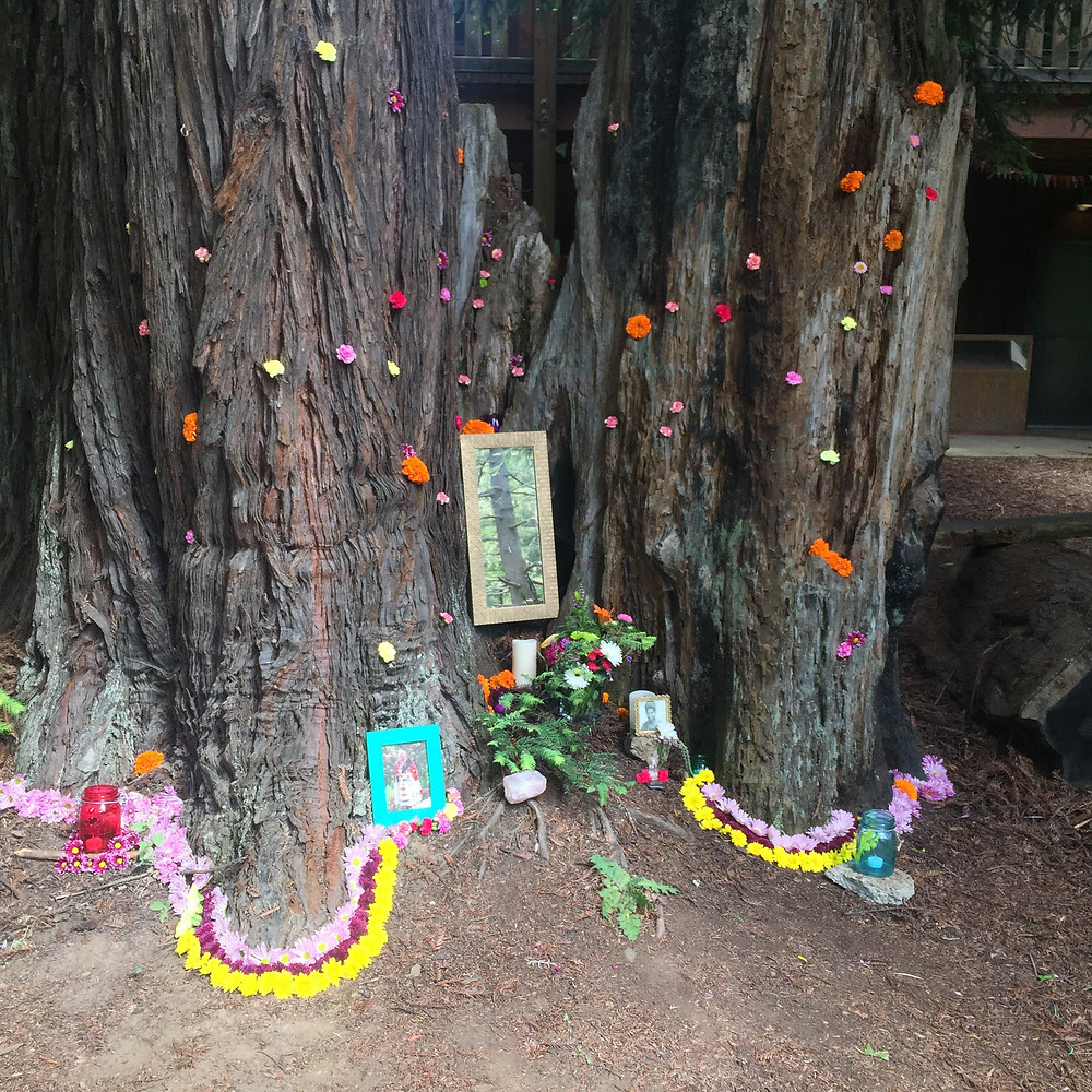 flower altars hiding in the woods