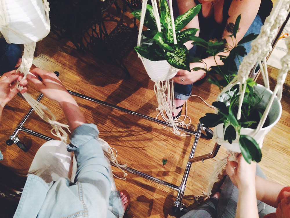 plant hangers in process