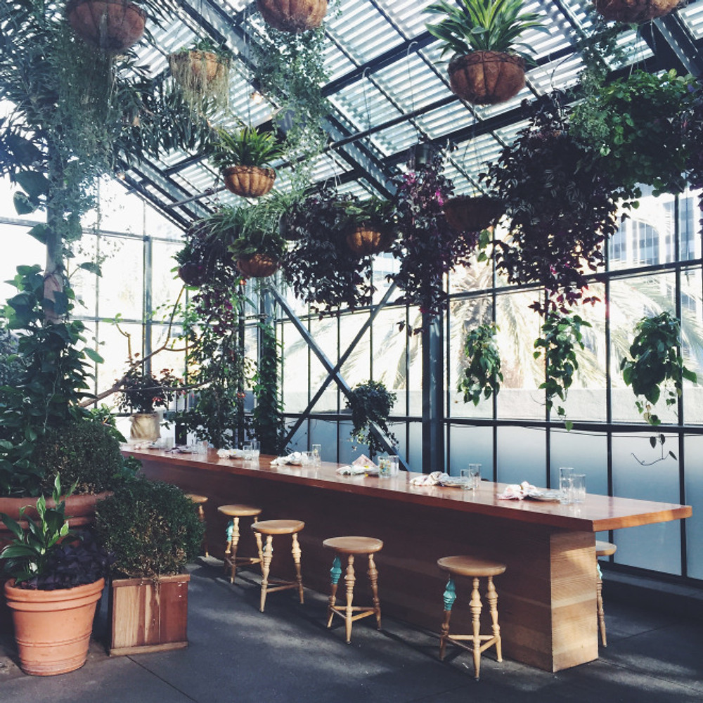 More plant inspiration at the Commissary at the LINE