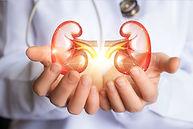 urologia.jpg