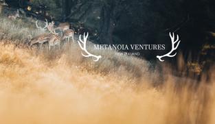 Metanoia Ventures