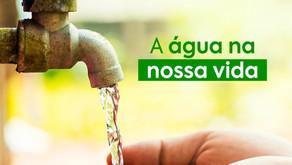 A importância da água nas nossas vidas!