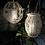 Thumbnail: Lanterne Rotin