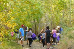 Gold panning at Desert Discovery Day
