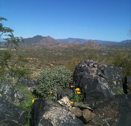 H.B. Wallace Preserve at Lone Mountain