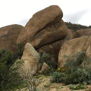 granite-boulders-on-wallace-preserve