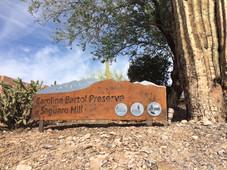 Strolling Saguaro Hill