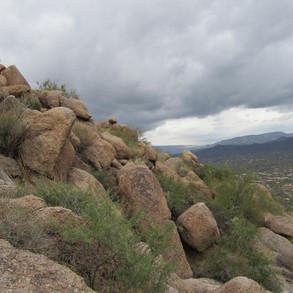 Black Mountain Preserve