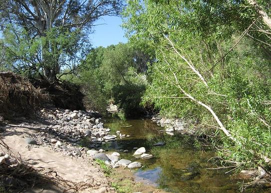 New River Nature Reserve