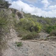 ranchitos-del-ray-north