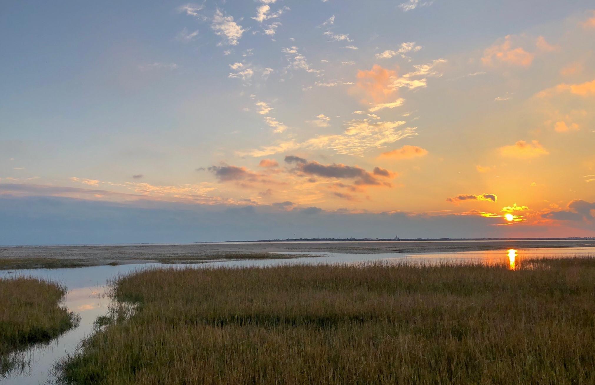 Sunset at Rachel Carson Reserve
