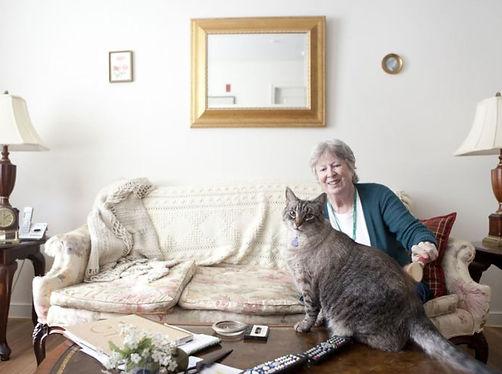 cat-client.JPG