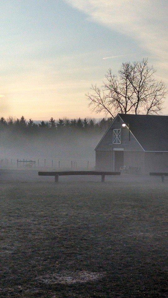Foggy morning on the farm.
