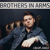 Brothers In Arms Artwork.jpg