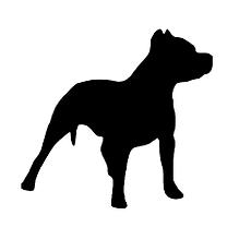 RECONOCIMIENTO APTITUD ANIMALES PELIGROSOS