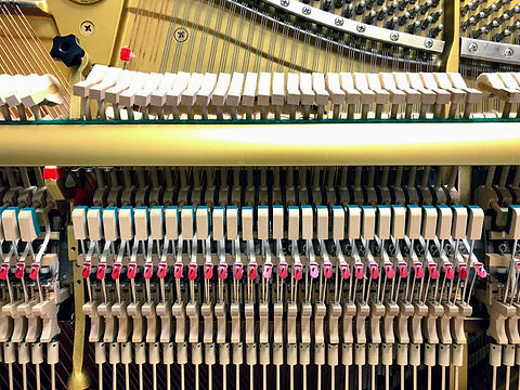 PianoGuts.jpg