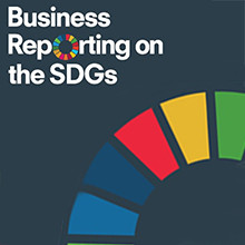 3 Years into SDGs - How We Are Doing?