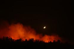 incendio forestal ruta 68, chile