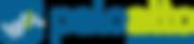 Palo_Alto_Networks_logo.png