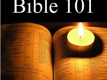 A Layman Bible 101 : Introduction
