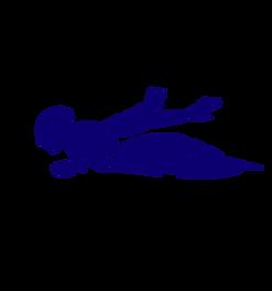 silhouette-de-noir-de-vecteur-de-butterf