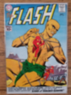 Flash120-front.jpg