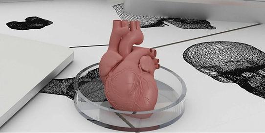 Utrecht-3D-Medical.jpg
