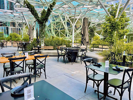 2120 has a great patio overlooking the Amazon Spheres