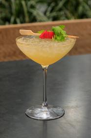 Unique Craft Cocktails