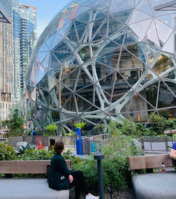 Our Patio is Right Next to the Amazon Spheres