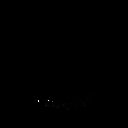 BicycleMayor Logo new - small