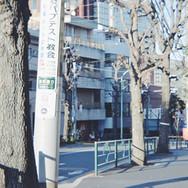 3.駒沢通りを左手に下っていきます。