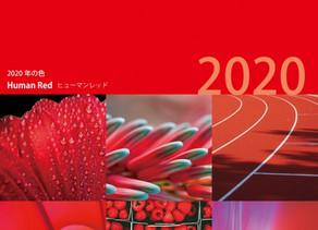 2020年の色(カラー)はこれだ!