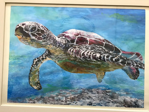 【油絵風水彩画の販売】北海道石狩市・紅葉山公園の風景を『水彩画』にしました。